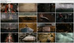 Esterhazy (2009) PL.TVRip.XviD / PL